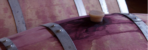Comments and Analysis on the 2012 Barrel Samples at Passport to Cabernet