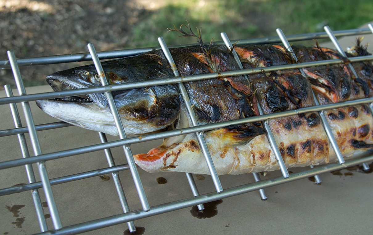 salmon-in-rack