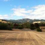 The Temelec Hills in southern Sonoma County -