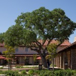 Vina Robles courtyard -